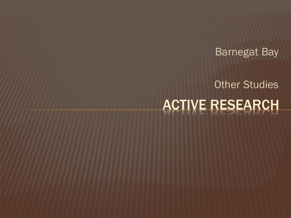 Barnegat Bay Other Studies Active Research