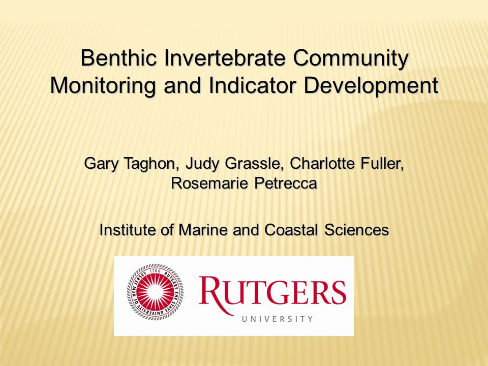 Benthic Invertebrate Community Monitoring and Indicator Development
