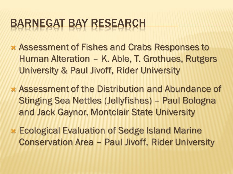 Barnegat Bay Research