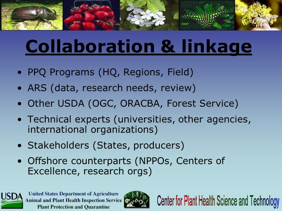 Collaboration & linkage