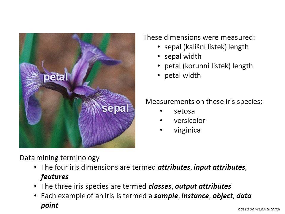 These dimensions were measured: sepal (kališní lístek) length