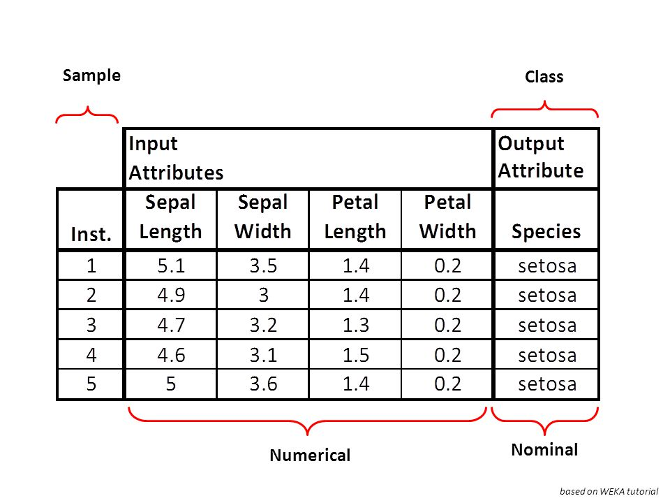 Sample Class Nominal Numerical