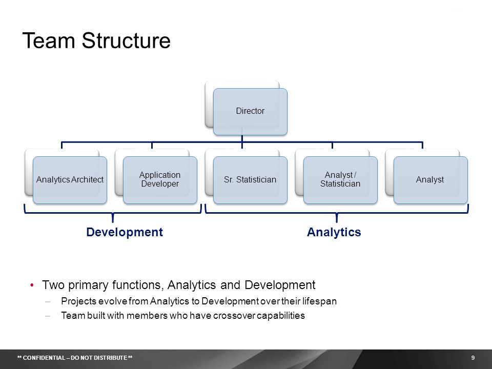 Team Structure Development Analytics