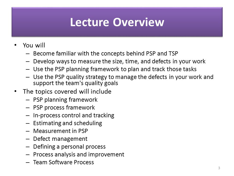 Lecture Overview You will The topics covered will include