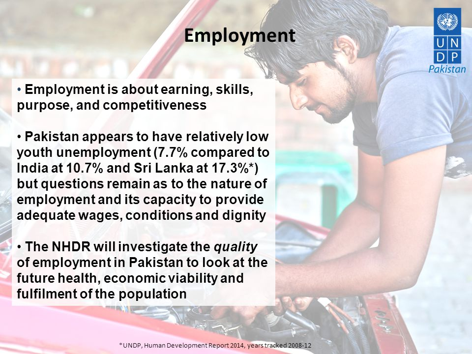 Employment Employment is about earning, skills, purpose, and competitiveness.