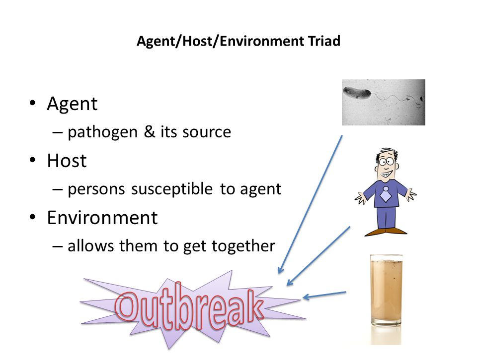 Agent/Host/Environment Triad