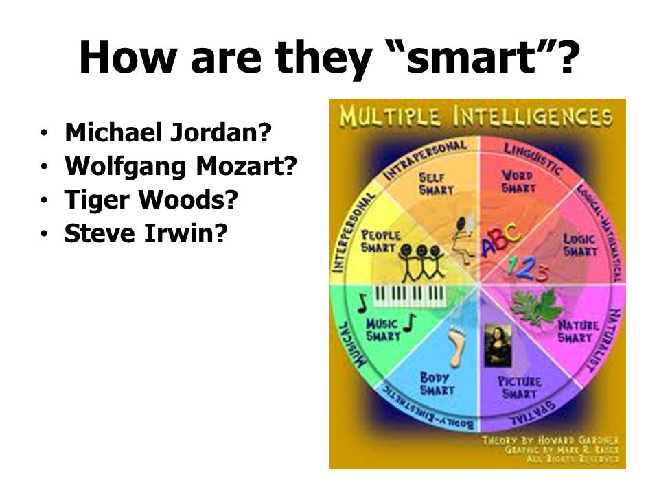 How are they smart Michael Jordan Wolfgang Mozart Tiger Woods