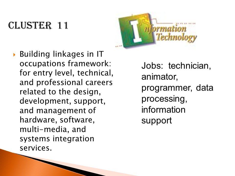 Cluster 11