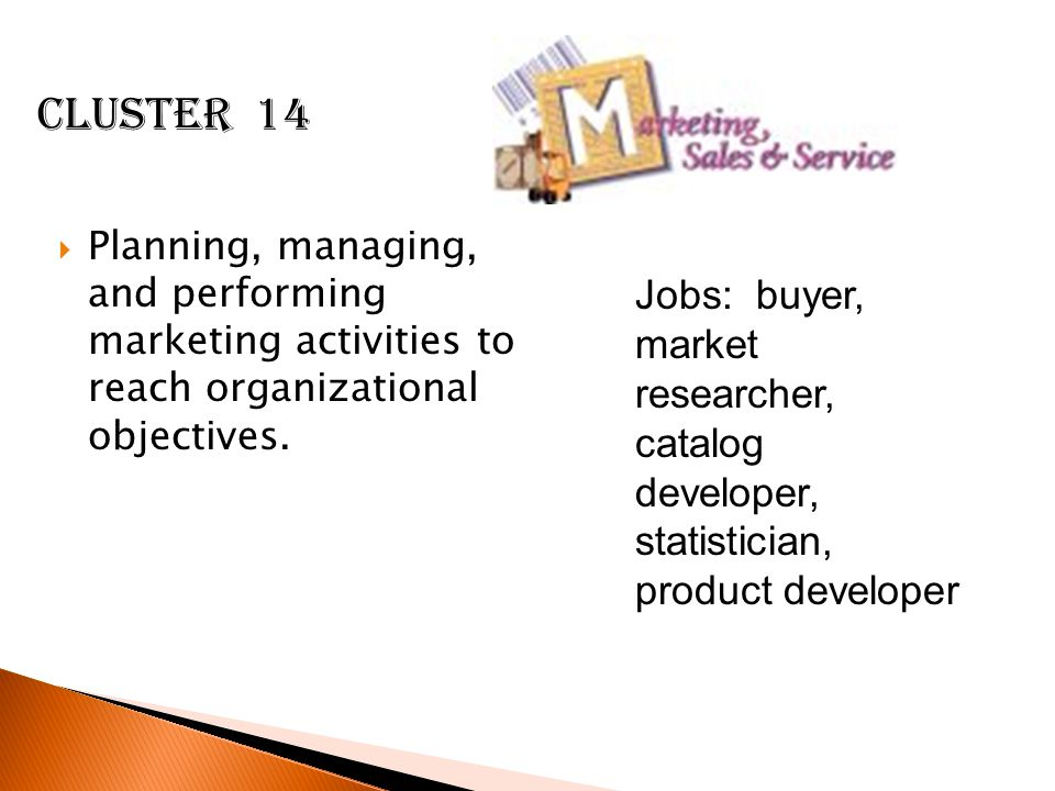 Cluster 14 Planning, managing, and performing marketing activities to reach organizational objectives.