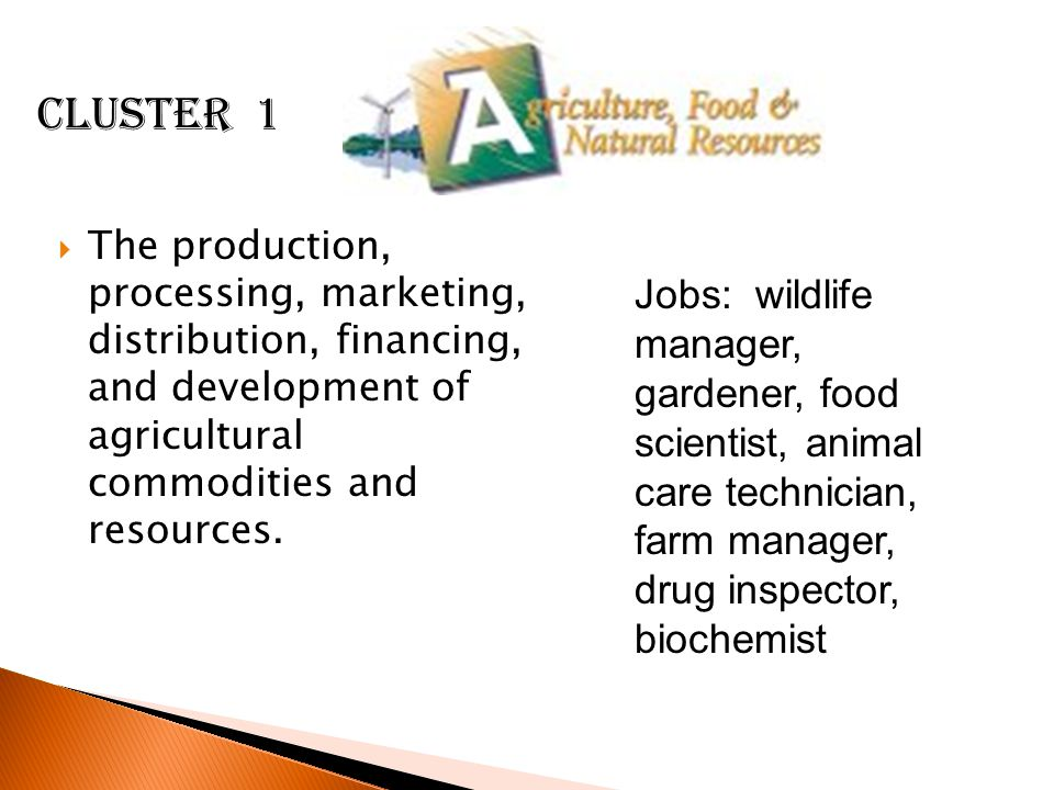 Cluster 1 The production, processing, marketing, distribution, financing, and development of agricultural commodities and resources.