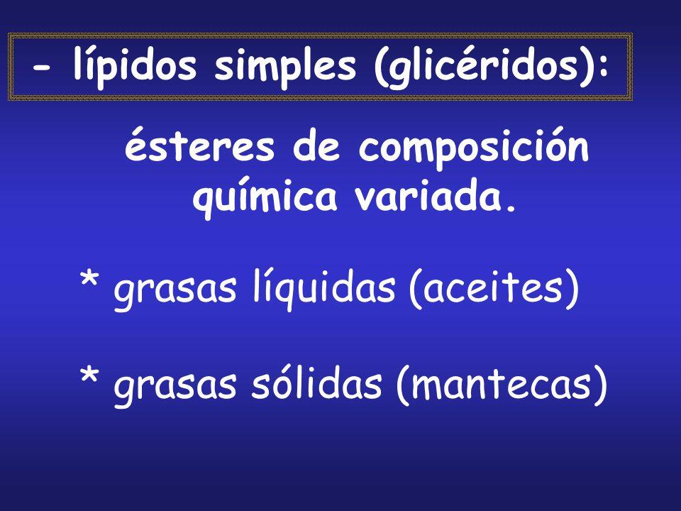 - lípidos simples (glicéridos):