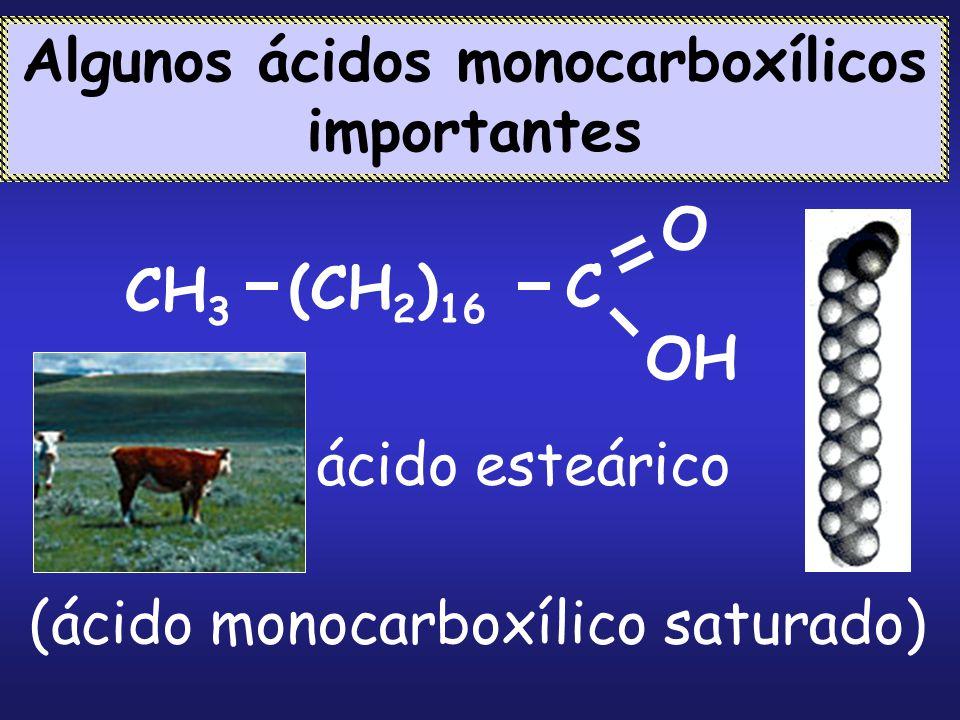 Algunos ácidos monocarboxílicos importantes