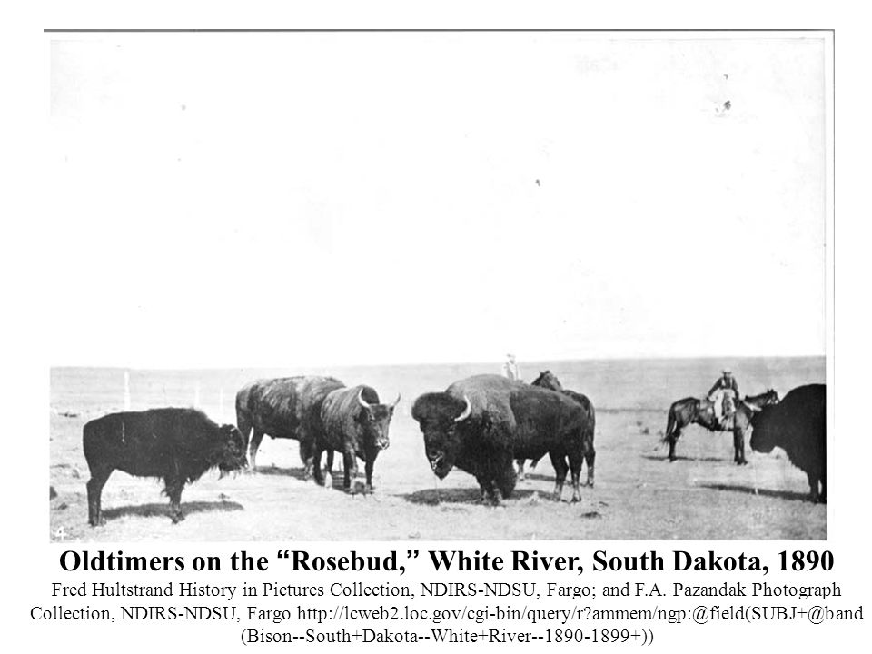 Oldtimers on the Rosebud, White River, South Dakota, 1890 Fred Hultstrand History in Pictures Collection, NDIRS-NDSU, Fargo; and F.A.