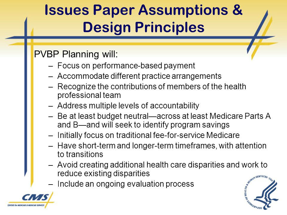 Issues Paper Assumptions & Design Principles