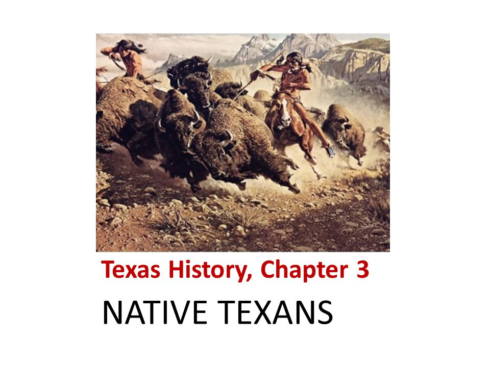 Texas History, Chapter 3 NATIVE TEXANS