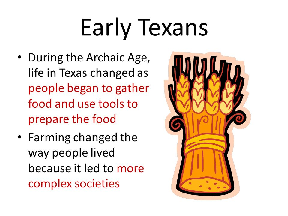 Early Texans During the Archaic Age, life in Texas changed as people began to gather food and use tools to prepare the food.