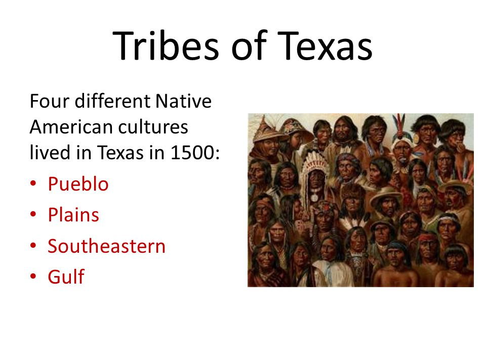 Tribes of Texas Four different Native American cultures lived in Texas in 1500: Pueblo. Plains. Southeastern.
