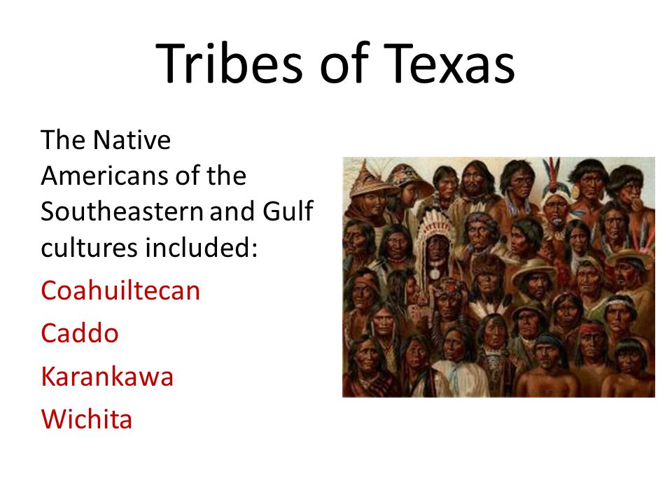 Tribes of Texas The Native Americans of the Southeastern and Gulf cultures included: Coahuiltecan Caddo Karankawa Wichita