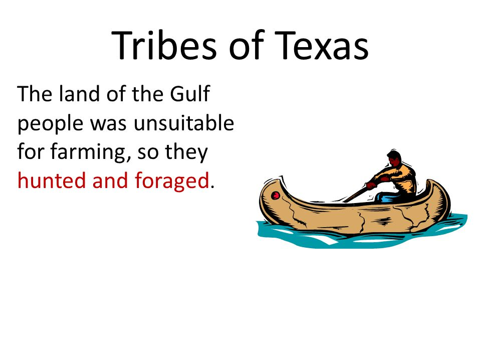 Tribes of Texas The land of the Gulf people was unsuitable for farming, so they hunted and foraged.