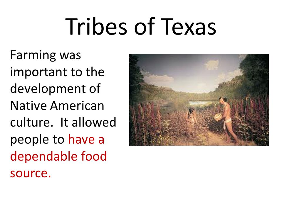 Tribes of Texas Farming was important to the development of Native American culture.