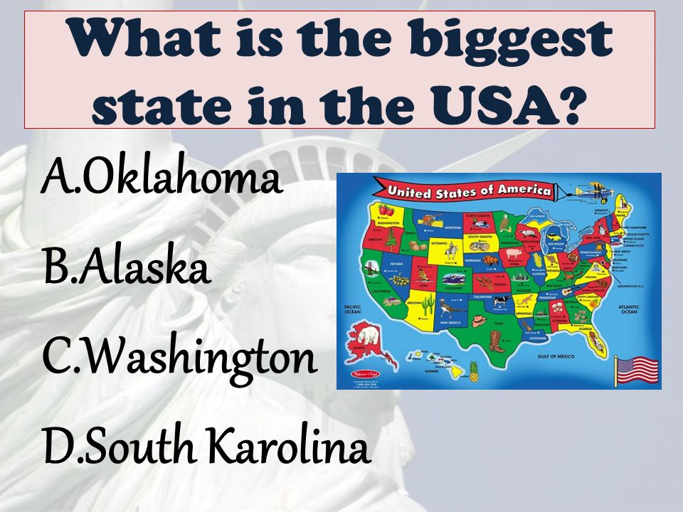 What Do You Know About The USA Ppt Video Online Download - Biggest state in usa
