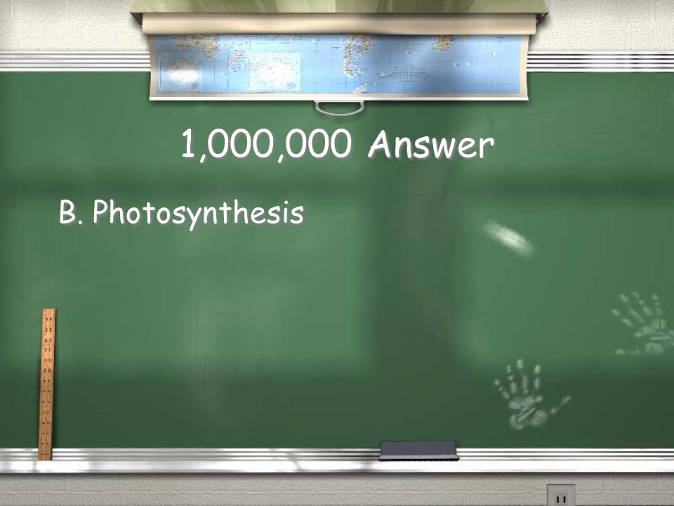 1,000,000 Answer B. Photosynthesis