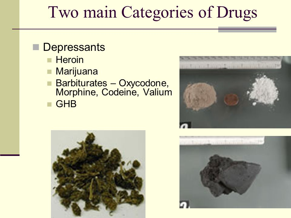 Two main Categories of Drugs
