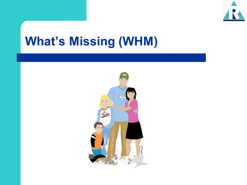 What's Missing (WHM)