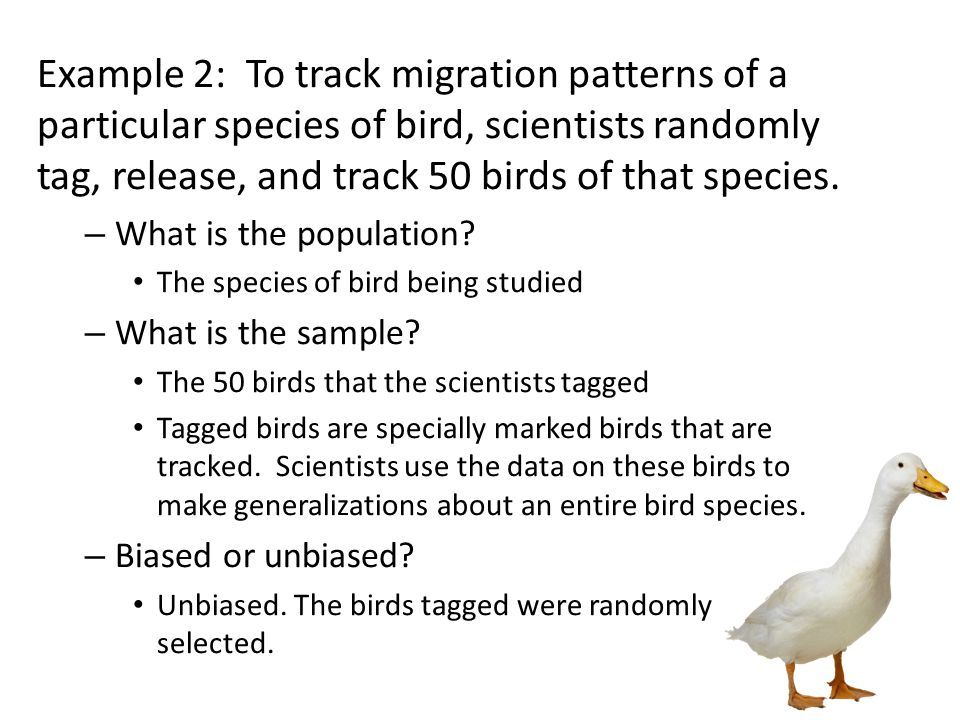 Example 2: To track migration patterns of a particular species of bird, scientists randomly tag, release, and track 50 birds of that species.