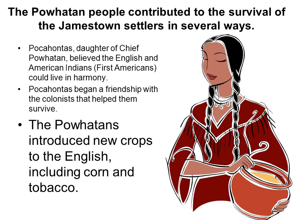 The Powhatan people contributed to the survival of the Jamestown settlers in several ways.