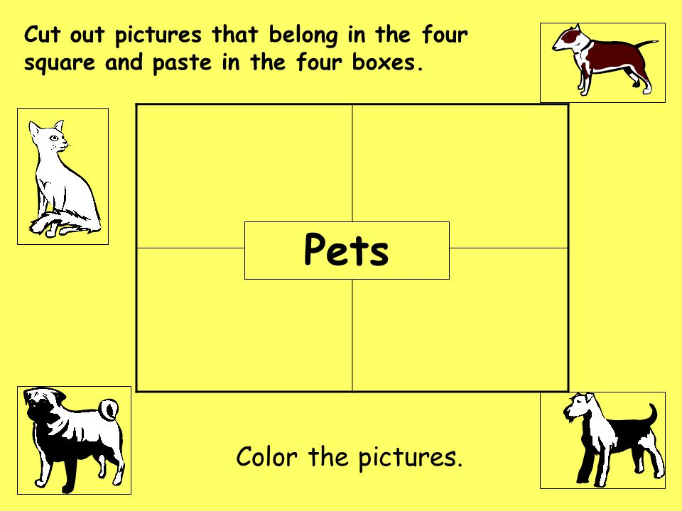 Pets Color the pictures.