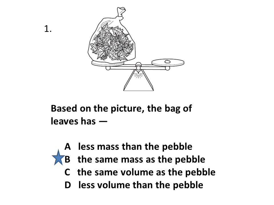 1. Based on the picture, the bag of leaves has — A less mass than the pebble. B the same mass as the pebble.