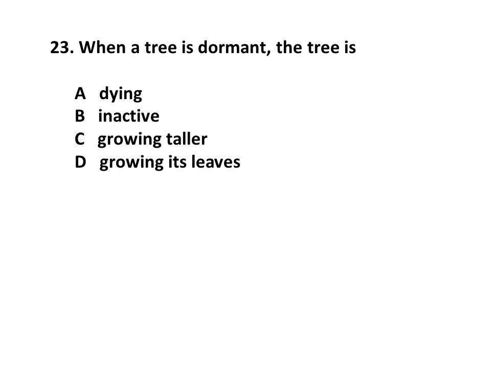 When a tree is dormant, the tree is