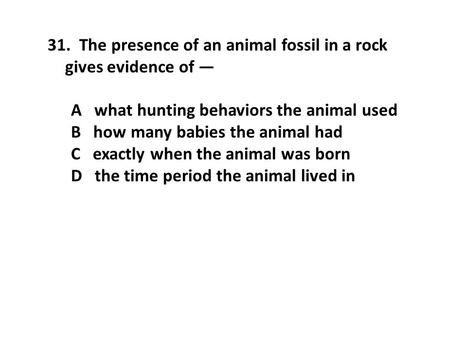 The presence of an animal fossil in a rock gives evidence of —