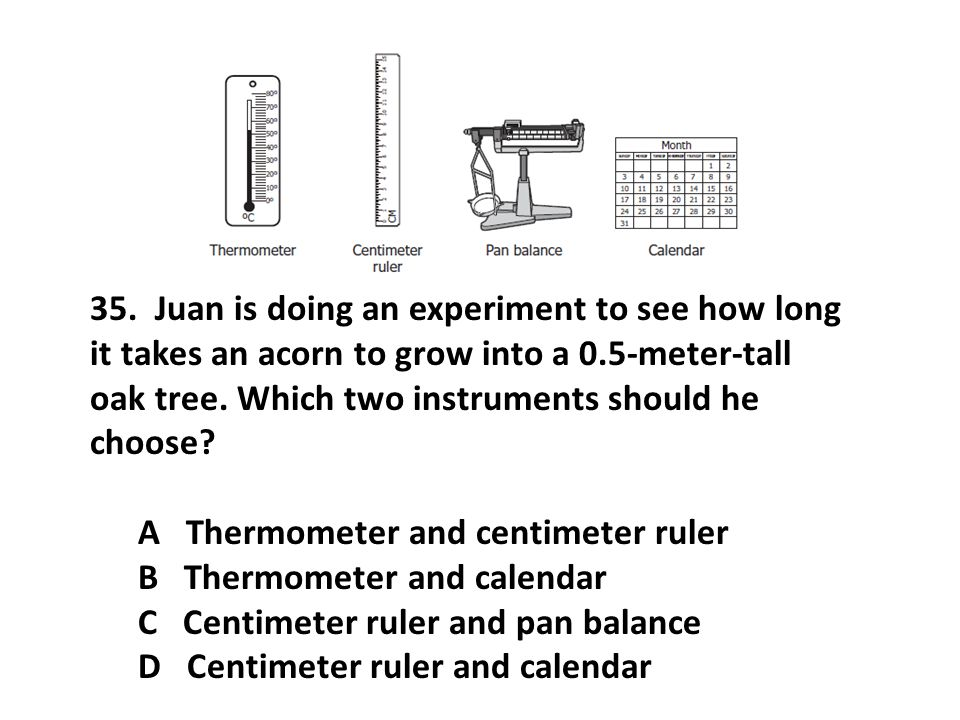 35. Juan is doing an experiment to see how long it takes an acorn to grow into a 0.5-meter-tall oak tree. Which two instruments should he choose