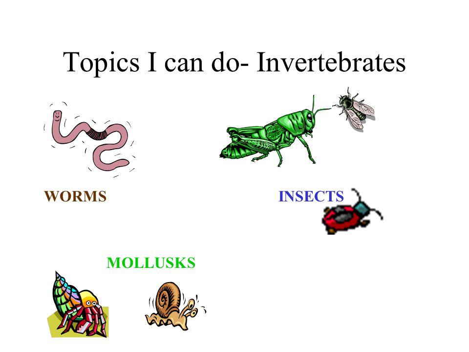 Topics I can do- Invertebrates