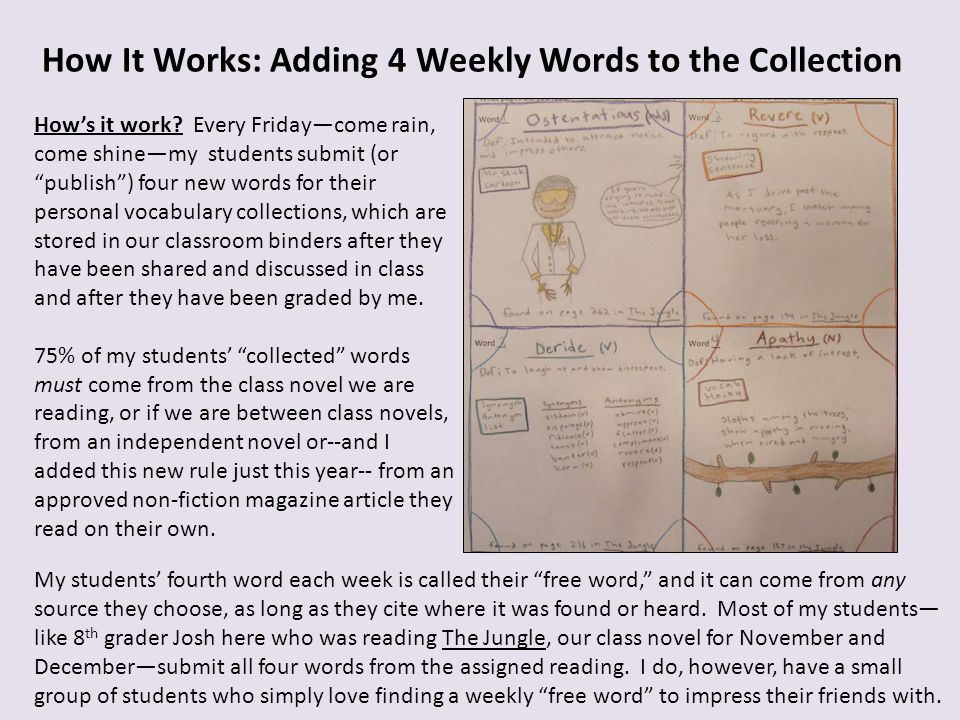 How It Works: Adding 4 Weekly Words to the Collection