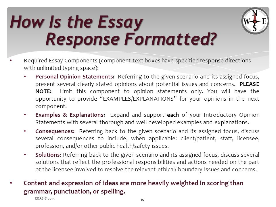How Is the Essay Response Formatted