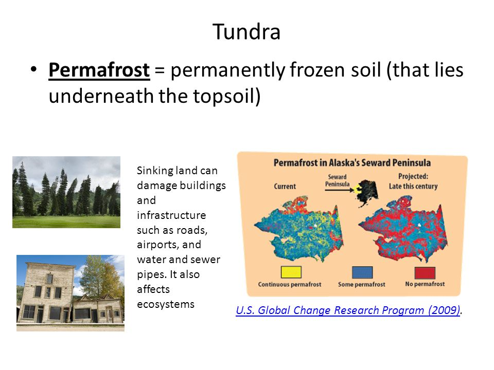 Tundra Permafrost = permanently frozen soil (that lies underneath the topsoil)