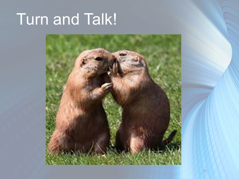 Turn and Talk!