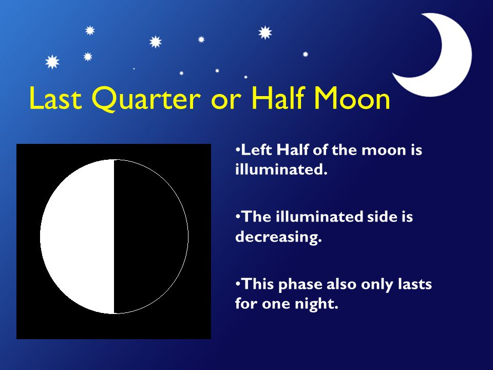 Last Quarter or Half Moon