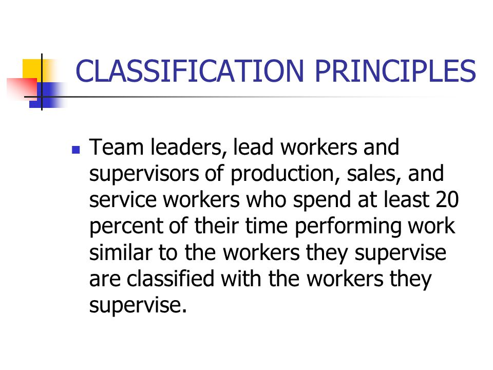CLASSIFICATION PRINCIPLES