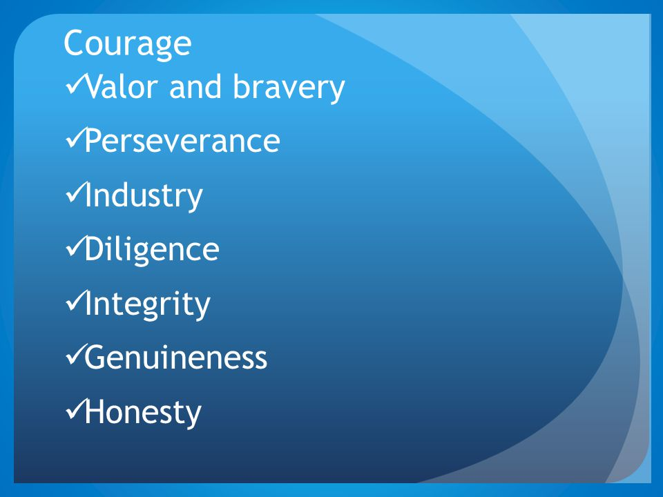 Courage Valor and bravery Perseverance Industry Diligence Integrity