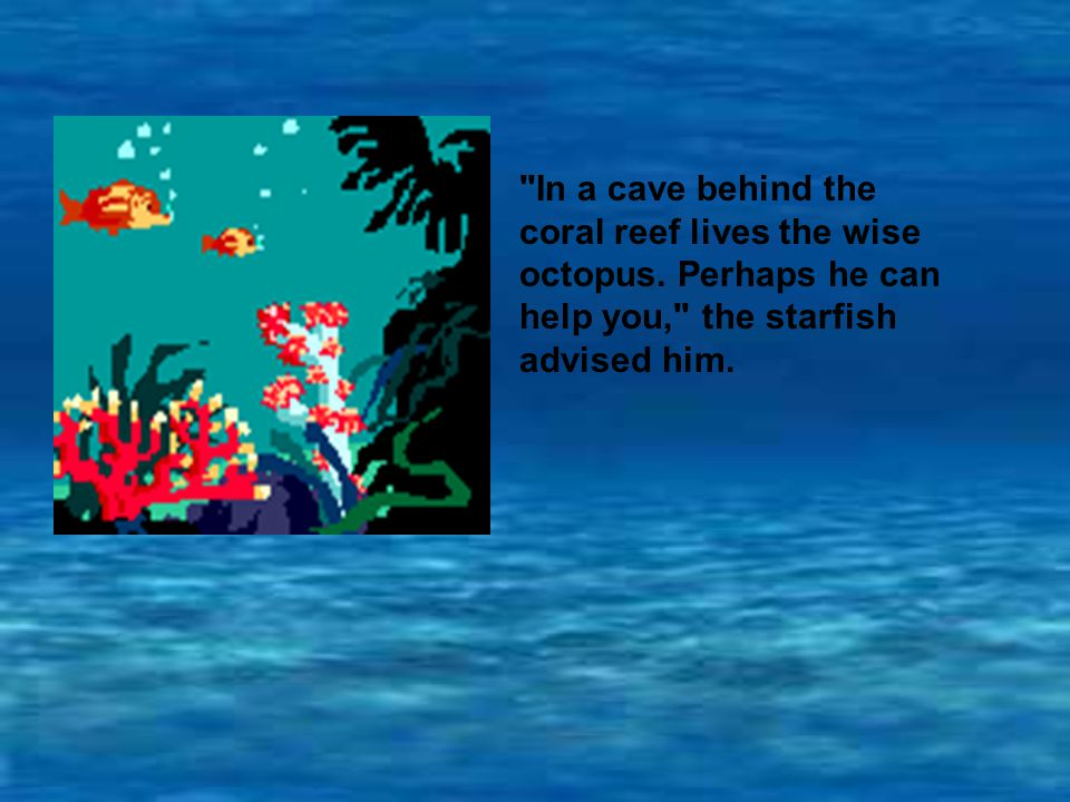 In a cave behind the coral reef lives the wise octopus