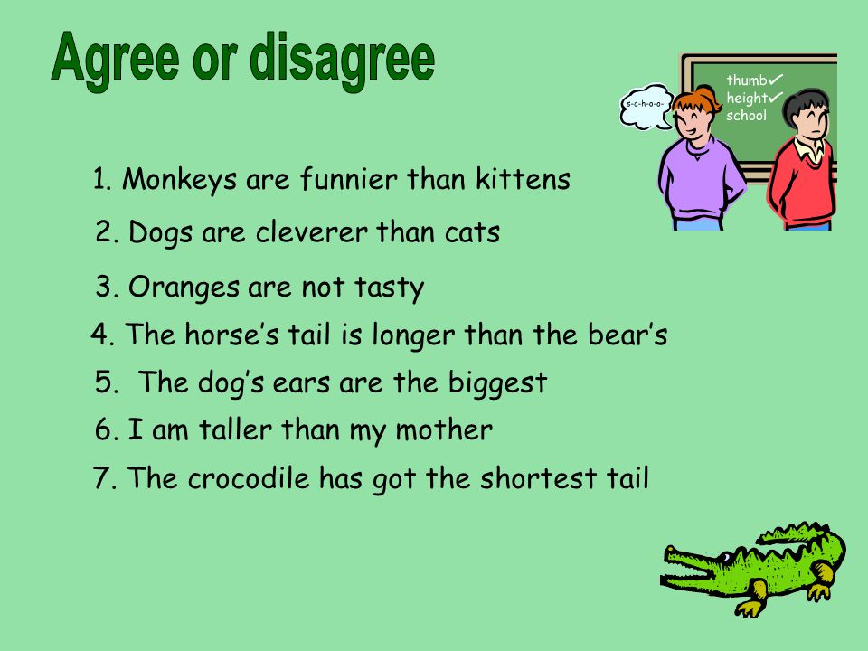 Agree or disagree 1. Monkeys are funnier than kittens