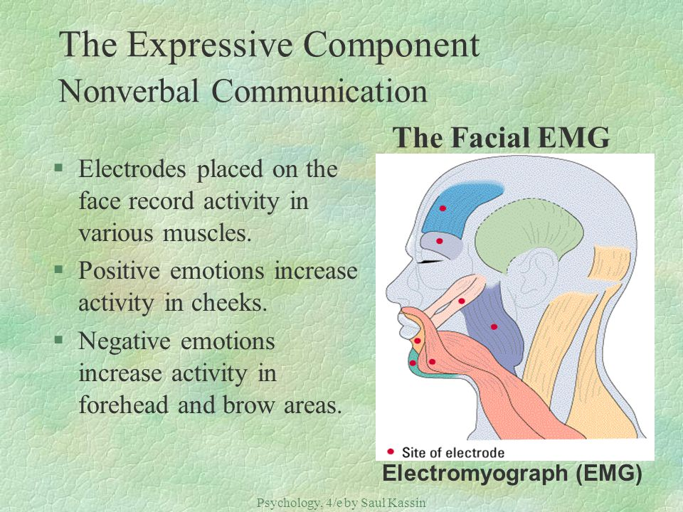 The Expressive Component Nonverbal Communication The Facial EMG
