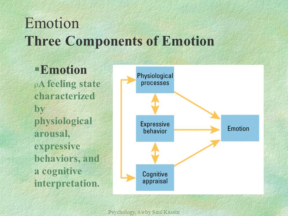 Emotion Three Components of Emotion