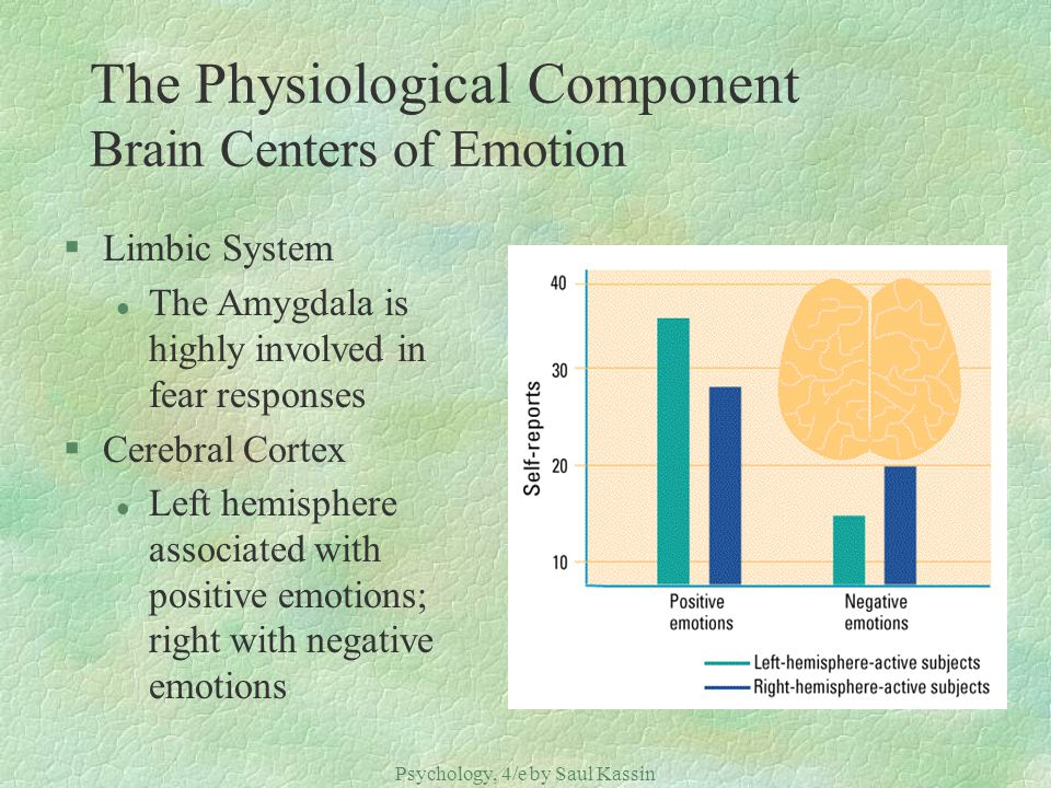The Physiological Component Brain Centers of Emotion