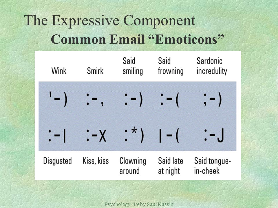 The Expressive Component Common Email Emoticons