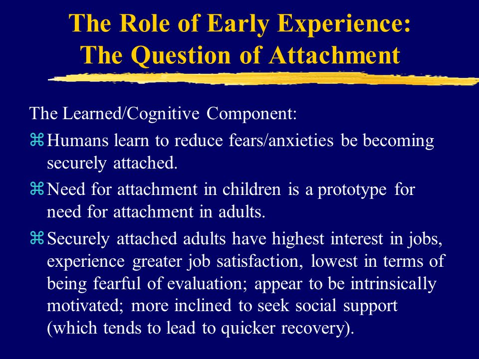The Role of Early Experience: The Question of Attachment